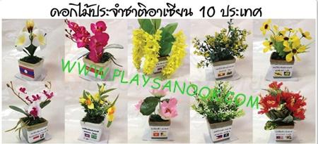 PF-008 ดอกไม้ประจำชาติอาเซียน10 ประเทศ