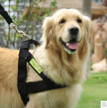 สายจูง สายจูงรัดอกสำหรับสุนัขขนาดใหญ่ สะท้อนแสง