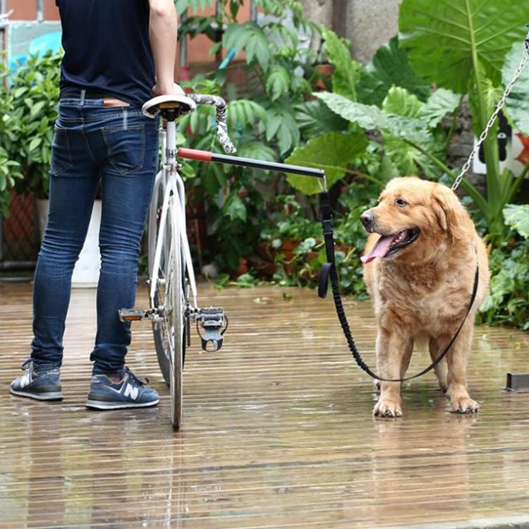 แท่งจูงสุนัขปั่นจักรยาน