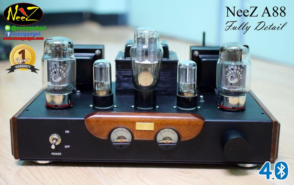 NeeZ A88 (KT88) Fully Detail Class A // Hard-wire Handmade
