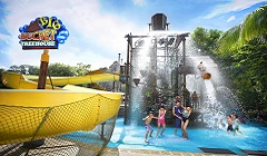 Adventure Cove Waterpark (เด็ก)