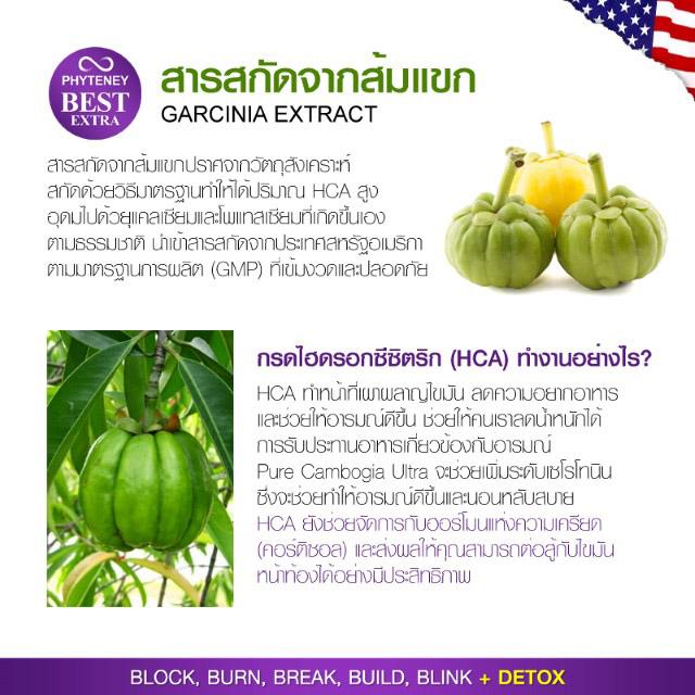 สารสกัดจากส้มแขก (Garcenia) ในไฟทินี่ เบสท์ เอ็กซ์ตร้า Phyteney Best Extra ช่วยสำหรับในการยั้งแป้ง ไม่ให้เปลียนเป็นน้ำตาล โดยมีสารสำคัญเป็น Garconia atroviridis / HCAเป็นสารสกัดที่ได้มาจากธรรมชาติจากผลส้มแขกของไทย ให้สารไฮดรอกซีซิตริกแอสิด หรือ เอชซีเอ ที่มีจำนวนสูงสุดในโลก (มากยิ่งกว่า 70%) แล้วก็ละลายน้ำได้ 100% ร่างกายก็เลยดูดซับไปใช้ได้อย่างเต็มคุณภาพ ทำให้ยั้งการนำน้ำตาล จากของกินชนิด แป้ง ข้าว แล้วก็น้ำตาล ไม่ให้แปรไปเป็นไขมันสะสมตามร่างกายแม้กระนั้นจะเอาไปใช้เป็นพลังงานของร่างกาย ทำให้ร่างกายชื่นบานไม่เมื่อยล้า และก็ เมื่อในกระแสโลหิตไม่ขาดน้ำตาล ก็จะมีผลให้ความรู้สึกหิวอาหารต่ำลง ไปด้วย ช่วงเวลาเดียวกัน ก็ จะนำไปสะสมเป็นพลังงานสำรองในรูปของไกลโคเจนที่ตับ ทำให้ร่างกายรับทราบว่ามีพลังงานสำรองพอเพียง ทำให้ไม่ทราบสึกหิวมาก นอกเหนือจากนั้น ยังส่งผลไปกระตุ้น ให้มีการดึงเอาไขมันที่สะสมออกมาใช้เป็นพลังงานทำให้ไขมันที่สะสมอยู่ต่ำลง ซึ่งจะส่งผล ทำให้รูปร่างดียิ่งขึ้น จากผลการศึกษา (ของนักวิทยาศาสตร์ไทย ซึ่งนำโดย ศาสตราจารย์ ดร.พิเชษฐ วิริยะจิตรา แล้วก็คณะ) ได้เอ๋ยถึงคุณลักษณะของสารสกัดจากผลส้มแขก (HCA) ว่าสามารถช่วยลดไขมันภายในร่างกายได้ดิบได้ดี โดยที่สาร HCA จะไปขวางการทำงานของโปรตีนที่ทำหน้าที่เร่งปฏิกิริยาเคมีที่จะแปลงแป้งแล้วก็น้ำตาลเป็นไขมันได้บางส่วน (ปริมาณร้อยละ ๔๐-๗๐ ซึ่งจะเป็นขั้นตอนภายหลังที่ร่างกายได้นำเอาพลังงานที่ควรจะได้รับจากแป้งและก็น้ำตาลไปใช้อย่างพอเพียงแล้ว) ไขมันก็เลยถูกผลิตลดน้อยลง ร่างกายมีพลังงานมากเพิ่มขึ้น เพราะเหตุว่า ไกลโคเจนมิได้ถูกแปรไปเป็นไขมันทั้งสิ้น ด้วยเหตุผลดังกล่าวแหล่งสะสมพลังงานก็เลยเต็มนานขึ้น ผลเป็น อิ่มนานขึ้น หิวช้าลง (กินได้น้อย) ลดความต้องการของกินระหว่างมื้อลงได้